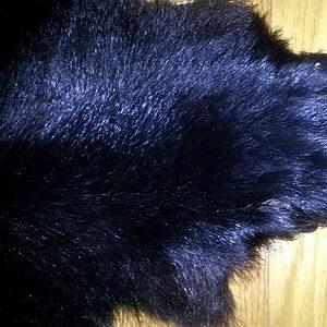 bear-paw