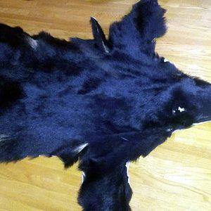 bear-pelt-full