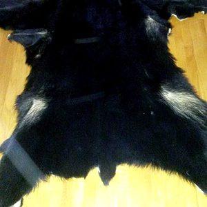 bear-pelt-full-v
